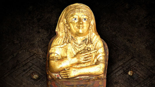 Golden Mummy photo