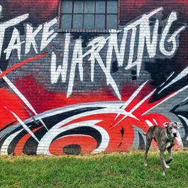 NHL Carolina Hurricanes mural that says Take Warning