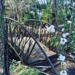 A small, metal bridge with rails in a beautiful, lush garden