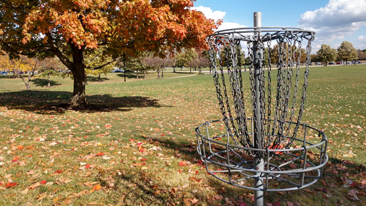 Close-up of a disc golf basket