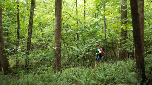 Woman hiking in a green, lush forest