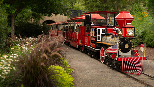 A red training rolling through Pullen Park