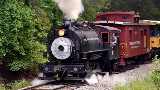 A small engine traveling down a track in the woods