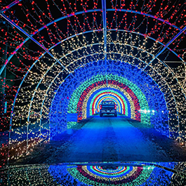 A colorful, seemingly-never-ending tunnel of holiday lights