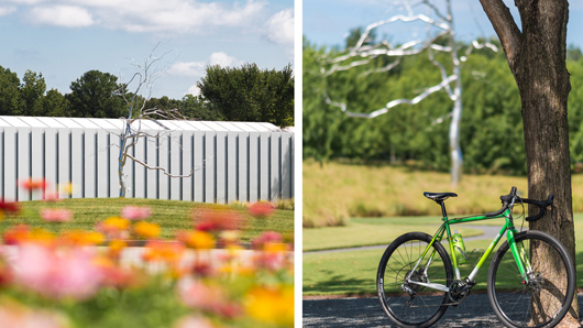 A photo of outdoor art at the North Carolina Museum of Art Park and a photo of a bike leaning on a tree at the park
