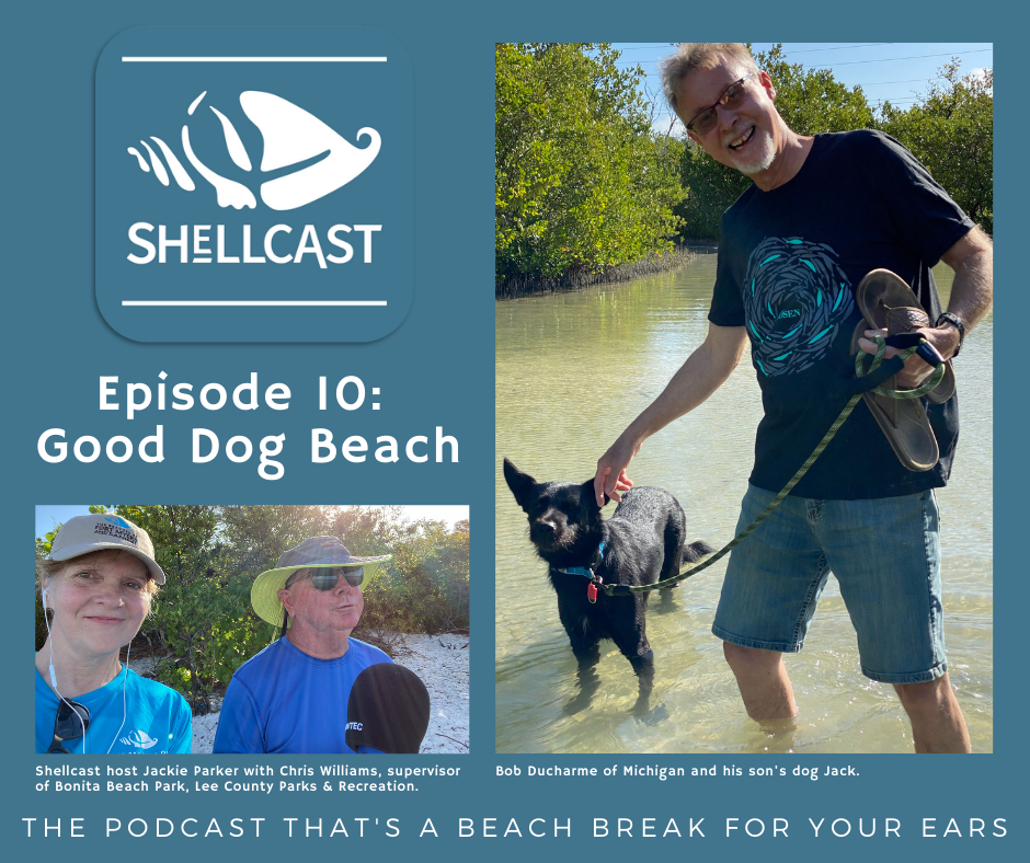 Shellcast episode at Dog Beach