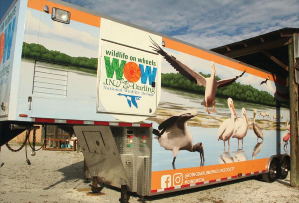 Wildlife on Wheels