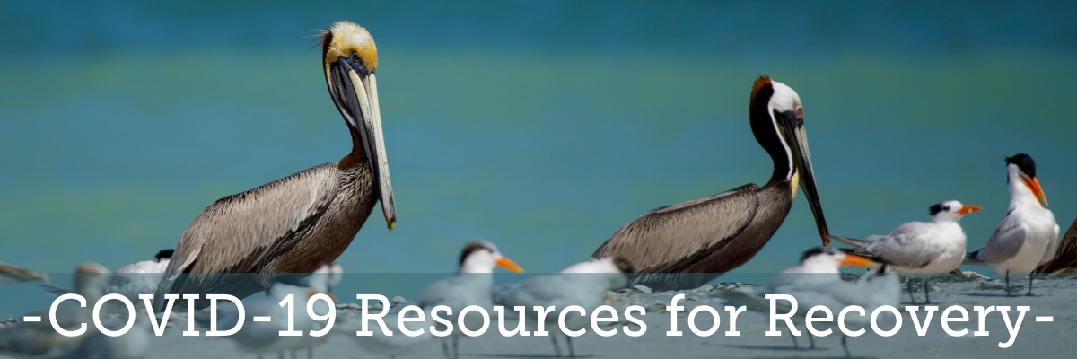 COVID-19 Resources for Recovery